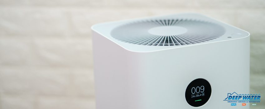 Can Air Purifiers Remove Household Mold Spores