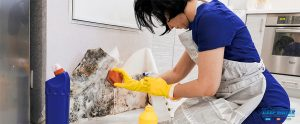 What and How to Clean After A Flood