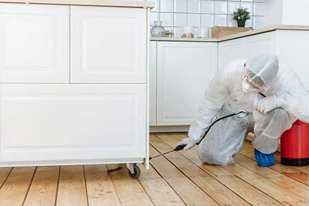 DWESR Cleaning and Disinfection