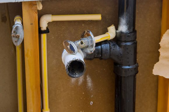 Mold Damage Inspection in Thorton, CO