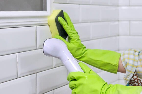 Mold Removal Experts in Thorton, CO