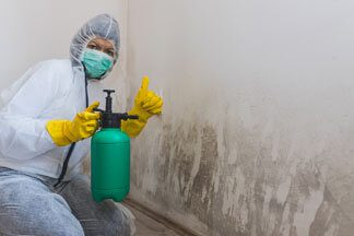 Cleaning and Sanitizing in Lakewood, CO