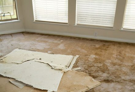 Water Dmage Experts in Aurora, CO